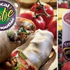 $5 for Smoothies at Tropical Smoothie Café