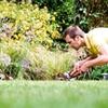 Up to 56% Off Landscaping Services