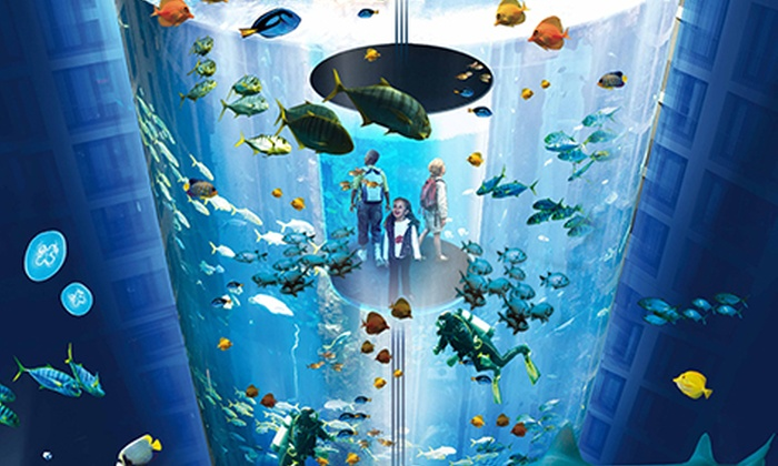 aquadom sea life berlin in berlin berlin groupon. Black Bedroom Furniture Sets. Home Design Ideas