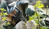 Combat Zone Paintball  - Enterprise: $29 for Full-Day Admission, Equipment Rental, and 500 Paintballs at Combat Zone Paintball (Up to $60 Value)