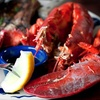 Half Off Seafood at The Fishery Grill in Glen Head