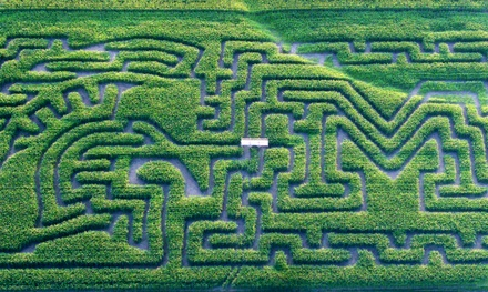 $13 for Corn Maze Visit for Four at Schwallier's Country Basket ($24 Value)