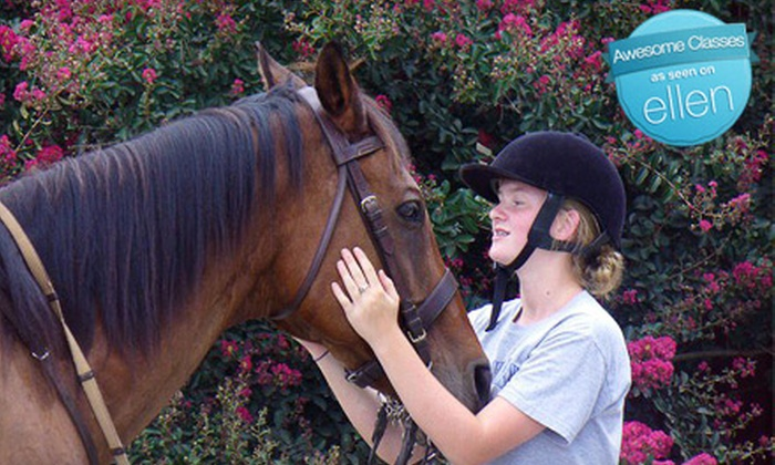 Cherokee Hill Farm - Columbus: Child or Adult Beginner Horseback-Riding Lesson at Cherokee Hill Farm in Tryon