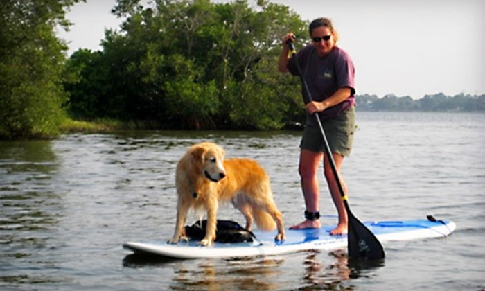 Tampa Bay SUP - Safety Harbor: Standup-Paddleboarding Lessons for One, Two, or Four People from Tampa Bay SUP