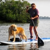 Up to 53% Off Standup-Paddleboarding Lessons