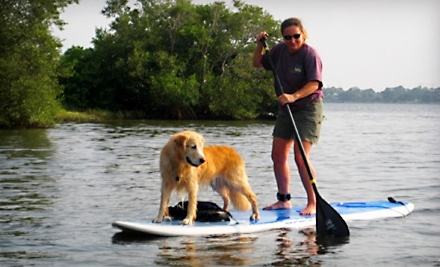 Standup-Paddleboarding Lesson for Two (an $80 value) - Tampa Bay SUP in