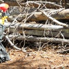 66% Off Paintball Outing for Two
