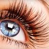 55% Off Eyelash Extensions in Glendale
