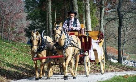 Kentucky Action Park: 2 One-Hour Horseback Trail Rides - Kentucky Action Park in Cave City