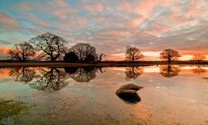 Chris Button Photography: Landscape Photography Course from £19.95 with Chris Button (Up to 60% Off)