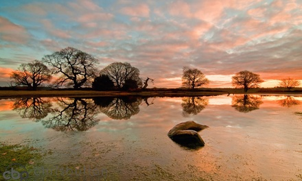 Photography Course, New Forest