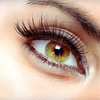 Up to 67% Off Eyelash Extensions in Kenner