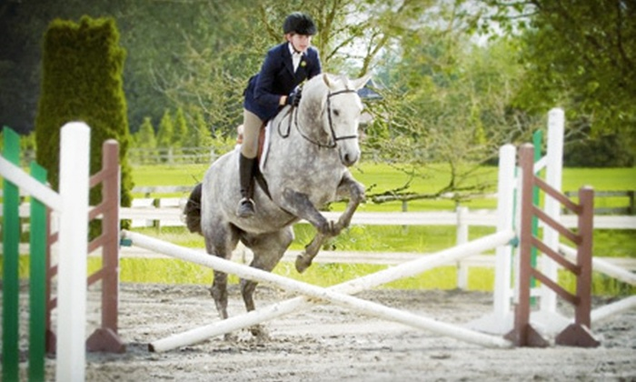 A&T Equestrian - South Surrey: One-Hour Horseback-Riding Lesson for One, Two, or Four at A&T Equestrian (Up to 65% Off)