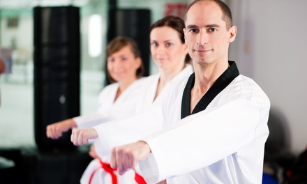 Four Drop-in or One Month Unlimited Martial Arts Lessons at Greenville Academy of Martial Arts (Up to 67% Off)