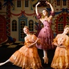 """""""The Nutcracker"""" – Up to 43% Off Ballet"""