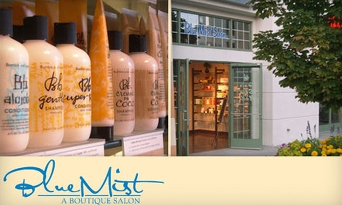 Blue Mist Salon - Lone Tree: $45 for $100 Worth of Products and Services at Blue Mist Salon in Lone Tree