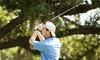 Par4Success - Hillandale Golf Course: Golf Evaluation and One or Two Golf-Fitness Training Sessions at Par4Success (Up to 55% Off)