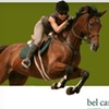 63% Off Horseback Riding Lessons at Bel Canto Farms in Dripping Springs