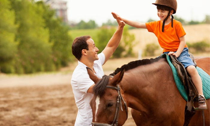 Dakota Stables - Greenvale: One, Three, or Five Semiprivate Horseback-Riding Lessons at Dakota Stables (Up to 54% Off)