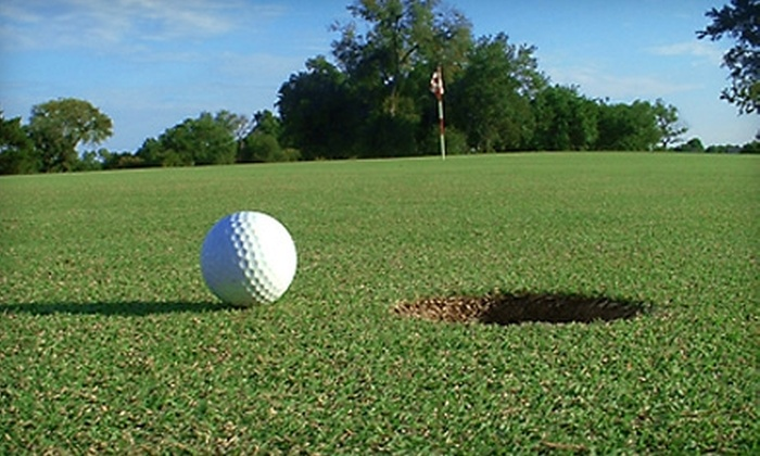 Willow Run Golf Club - Pewaukee: Round of Golf for Two, Cart Rental, a Bucket of Balls, and Concessions at Willow Run Golf Club in Pewaukee. Two Options Available.