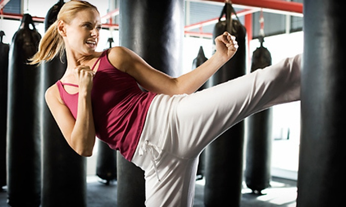 Smash Hit Kickboxing Club - Pontiac Commercial Historic District: $15 for Five 60-Minute Classes at Smash Hit Kickboxing Club in Pontiac ($65 Value)