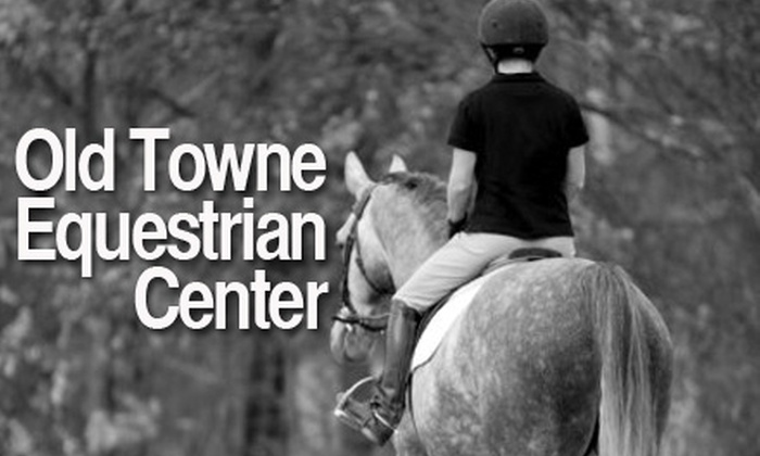 Olde Towne Equestrian Center - Long Island: $32 for a 60-Minute Private Horseback-Riding Lesson at Olde Towne Equestrian Center ($65 Value)