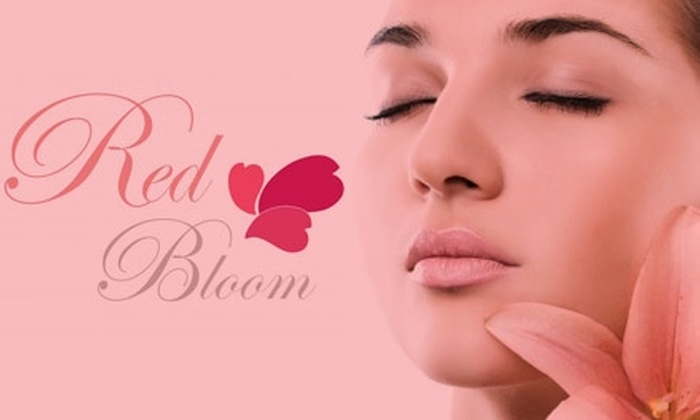The Red Bloom Wellness Spa - Bethesda: $60 for One of Three Facials from The Red Bloom Wellness Spa (Up to $150 Value)