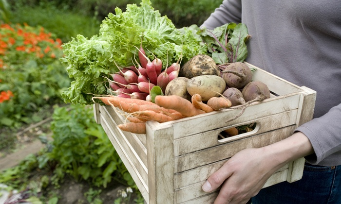 Pacific Coast Harvest - Seattle: Up to 50% Off Organic Produce with Delivery at Pacific Coast Harvest