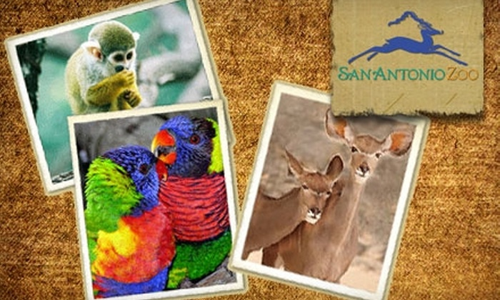 San Antonio Zoo and Aquarium - Uptown Broadway: $30 for a One-Year Family Membership at the San Antonio Zoo and Aquarium ($65 Value)