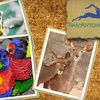 54% Off Zoo and Aquarium Membership