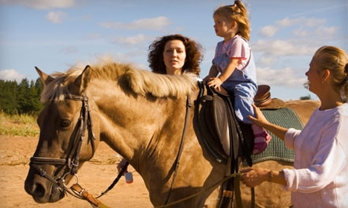 Oak View Stables - 1: $40 for Two Private Riding Lessons at Oak View Stables in Olive Branch ($100 Value)