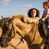 60% Off Private Riding Lessons in Olive Branch