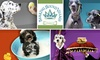 Barking Hound Village - Atlanta: $25 for $55 Worth of Doggie Daycare, Boarding, Grooming, or Training at Barking Hound Village