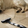 Up to Half Off Steam Carpet Cleaning
