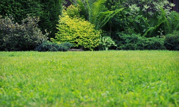 Weed Man - Dunn's Marsh: $25 for a Full Weed Control and Crabgrass Treatment from Weed Man (Up to $64 Value)
