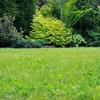 Up to 61% Off Weed Control and Crabgrass Treatment