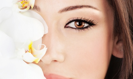 Permanent Eyeliner on Upper or Lower Eyelids or Both at Leo's on Chocolate Salon & Spa (Up to 50% Off)