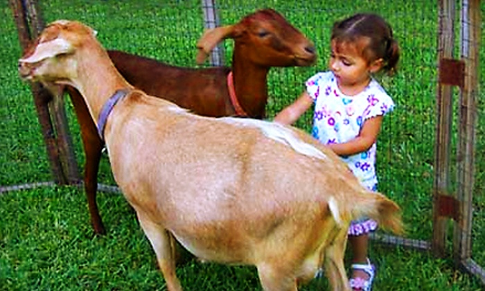 The Little Farm - Miami: $8 for a Farm Outing for Two at The Little Farm in Goulds ($16 Value)