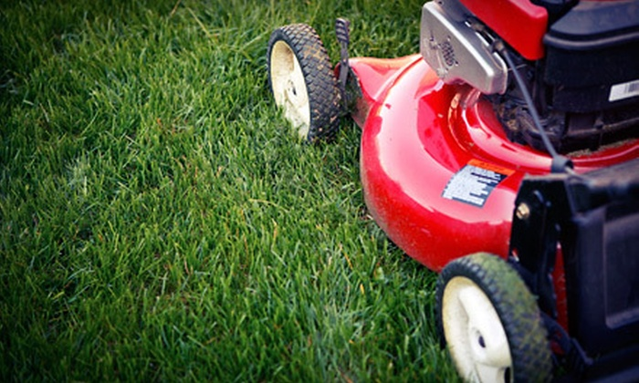 K&R Construction Company - Washington DC: Three or Six Months of Lawn Care with Trimming and Cutting from K&R Construction Company (Up to 72% Off)