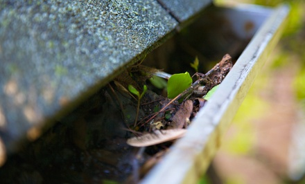 Gutter Cleaning for a One- or Two-Story Home from Sparkling Cleaning Service (Up to 75% Off)