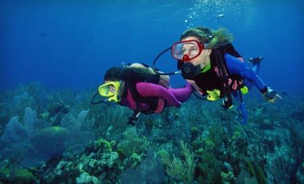 1-Hour Tooka-Diving Lesson (a $100 value) - Pura Vida Divers in Riviera Beach