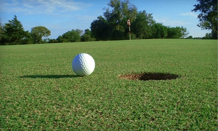 USA BagTag - Georgetown: $25 for 10 Rounds of Golf from USA BagTag in Austin ($50 Value)