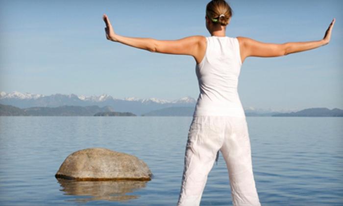 Studio 11 - Tremont: Five or Ten Yoga or Pilates Classes at Studio 11