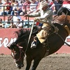 Half Off Rodeo Day for Two at the Ellensburg Rodeo