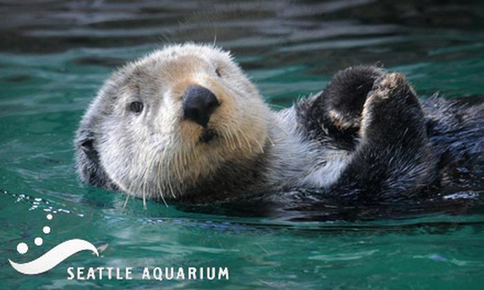 Seattle Aquarium - Seattle: $10 for Admission for One to Seattle Aquarium (Up to $19.95 Value)