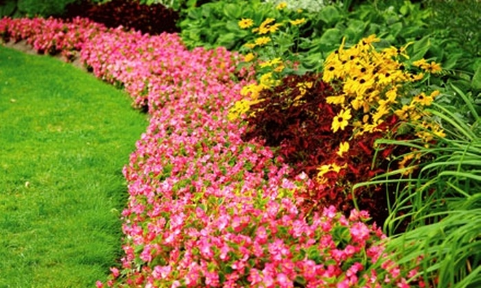 Northern Services AK - Anchorage: $59 for Three Lawn-Mowing, Edging, and Trimming Services from Northern Services AK ($165 Value)