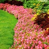 64% Off Lawn-Care Services
