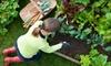 Half Off Gardening Supplies in Penetanguishene