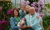 Dream Photography: Two- or Three-Hour Easter Photo Shoot Package from Dream Photography (51% Off)