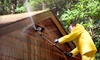 Elite Window Cleaning: Window or Pressure Washing or Gutter Cleaning from Elite Window Cleaning & Home Maintenance (Up to 76% Off). Four Options Available.
